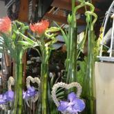 Blumengalerie