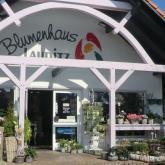 Blumen Laupitz - Das Geschäft 1