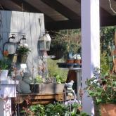 Blumen Laupitz - Das Geschäft 6