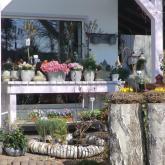 Blumen Laupitz - Das Geschäft 7